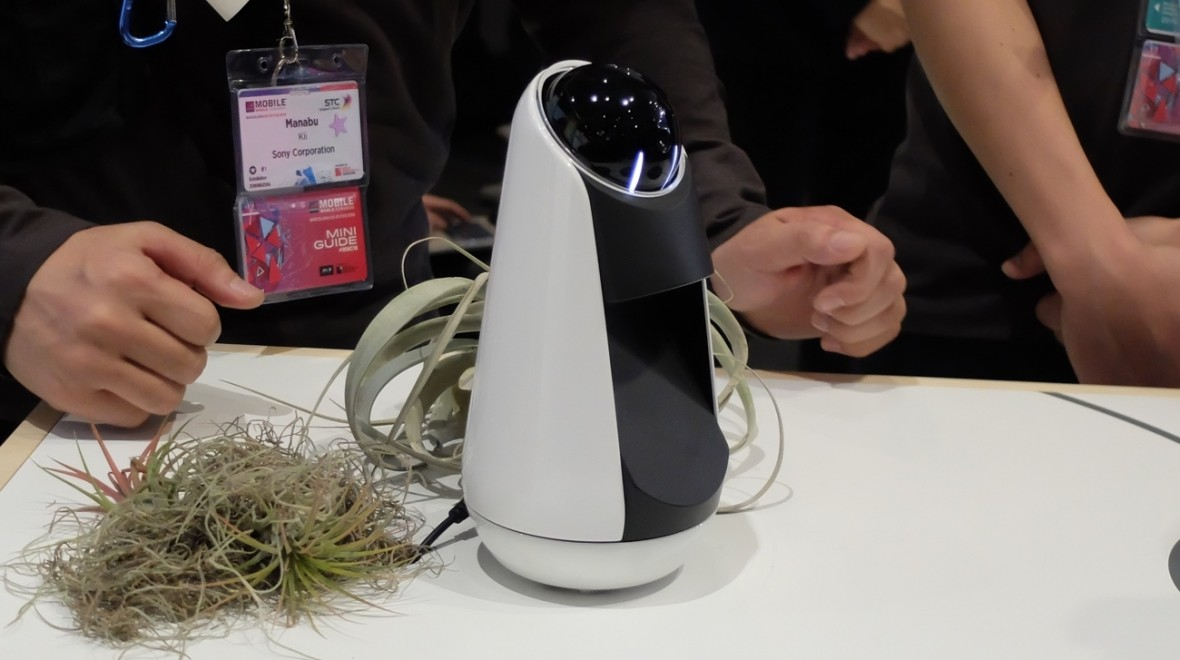 Sony's Xperia Agent aims to up the Echo