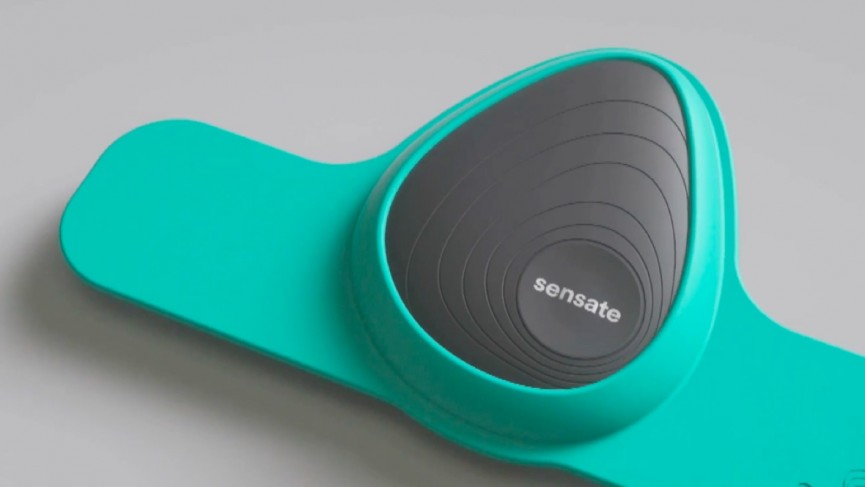 BioSelf's Sensate wants to help you manage your stress levels