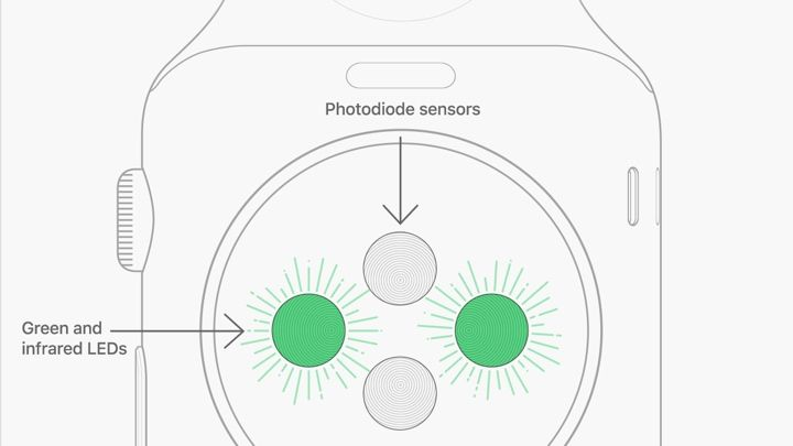 Apple Watch    heart rate    guide  How to use all Apple s    HR
