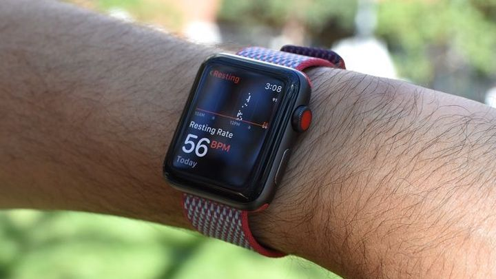 Apple Watch heart rate monitor guide: