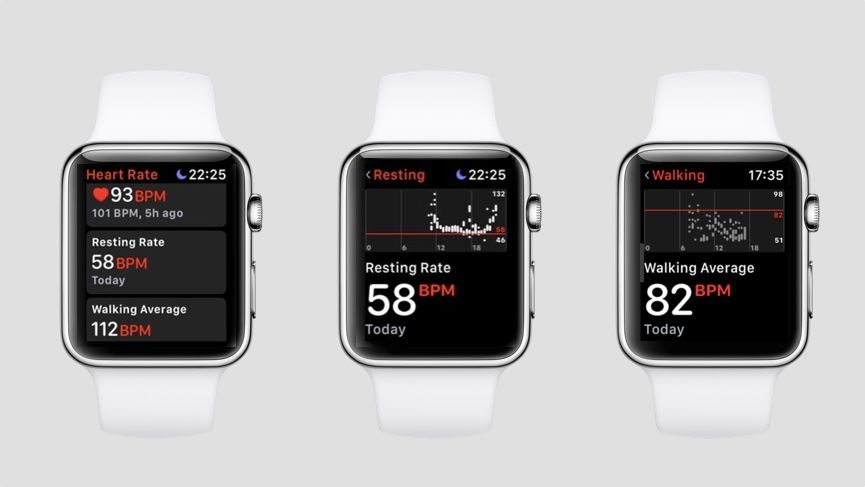 Apple Watch heart rate guide: How to use all of Apple's HR features