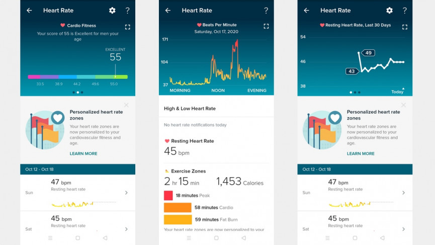 Fitbit Inspire 2 heart rate data